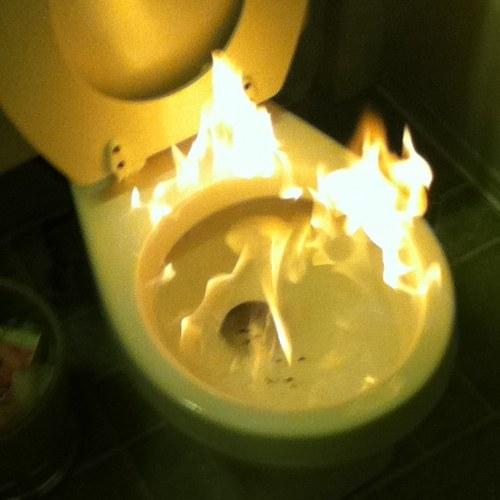 u0026quot toilet u0026quot  meme templates