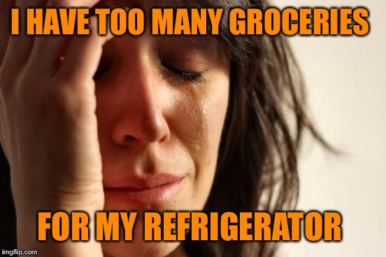 First World Problems Meme | I HAVE TOO MANY GROCERIES FOR MY REFRIGERATOR | image tagged in memes,first world problems | made w/ Imgflip meme maker