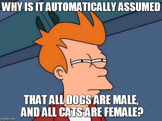 Futurama Fry Meme | WHY IS IT AUTOMATICALLY ASSUMED THAT ALL DOGS ARE MALE, AND ALL CATS ARE FEMALE? | image tagged in memes,futurama fry | made w/ Imgflip meme maker