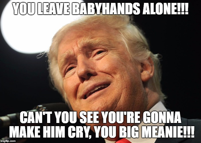 YOU LEAVE BABYHANDS ALONE!!! CAN'T YOU SEE YOU'RE GONNA MAKE HIM CRY, YOU BIG MEANIE!!! | image tagged in donald trump,trump,nevertrump,babyhands | made w/ Imgflip meme maker