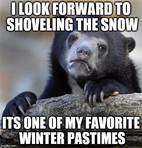 Confession Bear Meme | I LOOK FORWARD TO SHOVELING THE SNOW ITS ONE OF MY FAVORITE WINTER PASTIMES | image tagged in memes,confession bear | made w/ Imgflip meme maker