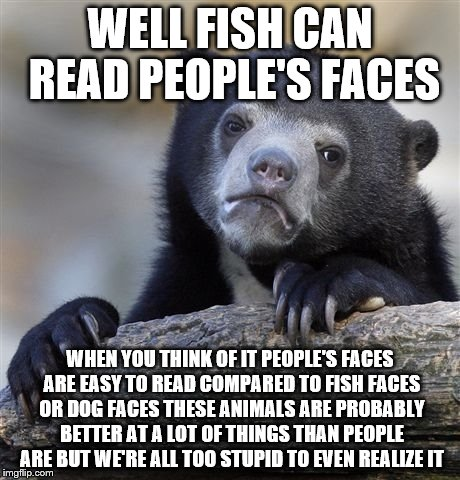 Confession Bear Meme | WELL FISH CAN READ PEOPLE'S FACES WHEN YOU THINK OF IT PEOPLE'S FACES ARE EASY TO READ COMPARED TO FISH FACES OR DOG FACES THESE ANIMALS ARE | image tagged in memes,confession bear | made w/ Imgflip meme maker