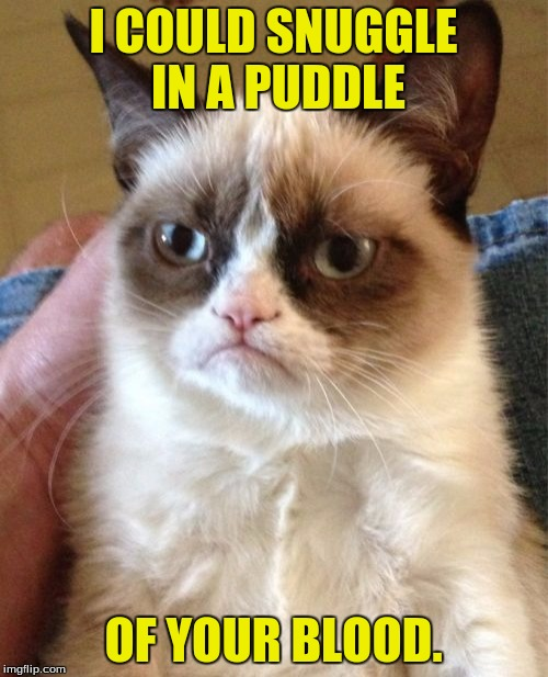 Grumpy Cat Meme | I COULD SNUGGLE IN A PUDDLE OF YOUR BLOOD. | image tagged in memes,grumpy cat | made w/ Imgflip meme maker