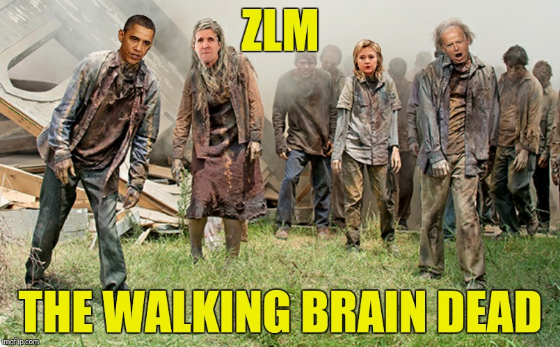 ZLM THE WALKING BRAIN DEAD | made w/ Imgflip meme maker