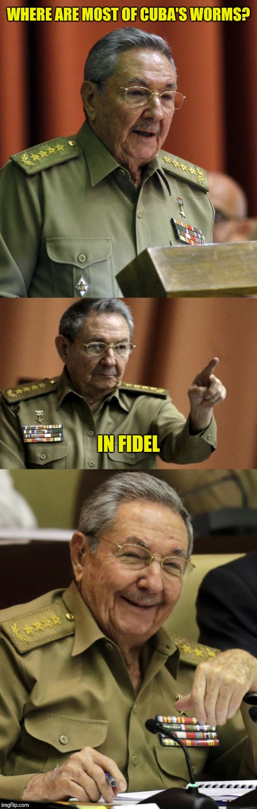 WHERE ARE MOST OF CUBA'S WORMS? IN FIDEL | made w/ Imgflip meme maker
