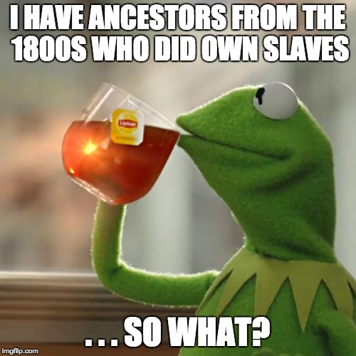 But Thats None Of My Business Meme | I HAVE ANCESTORS FROM THE 1800S WHO DID OWN SLAVES . . . SO WHAT? | image tagged in memes,but thats none of my business,kermit the frog | made w/ Imgflip meme maker