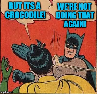 Batman Slapping Robin Meme | BUT ITS A CROCODILE! WE'RE NOT DOING THAT AGAIN! | image tagged in memes,batman slapping robin | made w/ Imgflip meme maker