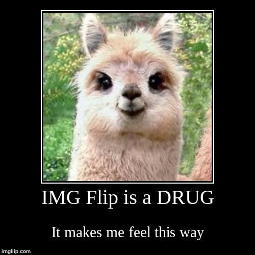 IMG Flip is a DRUG | It makes me feel this way | image tagged in funny,demotivationals | made w/ Imgflip demotivational maker