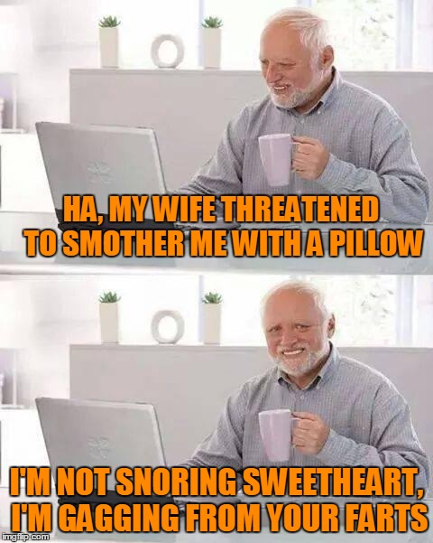 HA, MY WIFE THREATENED TO SMOTHER ME WITH A PILLOW I'M NOT SNORING SWEETHEART, I'M GAGGING FROM YOUR FARTS | made w/ Imgflip meme maker