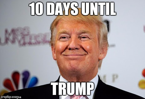 Donald trump approves | 10 DAYS UNTIL TRUMP | image tagged in donald trump approves | made w/ Imgflip meme maker