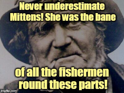 Never underestimate Mittens! She was the bane of all the fishermen round these parts! | made w/ Imgflip meme maker