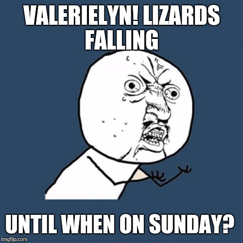 Y U No Meme | VALERIELYN! LIZARDS FALLING UNTIL WHEN ON SUNDAY? | image tagged in memes,y u no | made w/ Imgflip meme maker