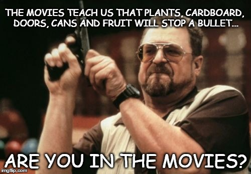 Bullet stop | THE MOVIES TEACH US THAT PLANTS, CARDBOARD, DOORS, CANS AND FRUIT WILL STOP A BULLET... ARE YOU IN THE MOVIES? | image tagged in memes,am i the only one around here,bullet,armor | made w/ Imgflip meme maker
