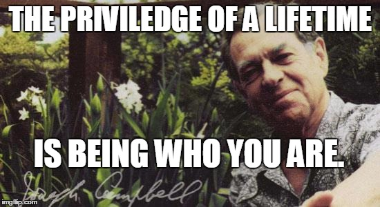 Be you. | THE PRIVILEDGE OF A LIFETIME IS BEING WHO YOU ARE. | image tagged in joseph campbell quotes | made w/ Imgflip meme maker