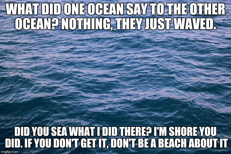 WHAT DID ONE OCEAN SAY TO THE OTHER OCEAN? NOTHING, THEY JUST WAVED. DID YOU SEA WHAT I DID THERE? I'M SHORE YOU DID. IF YOU DON'T GET IT, D | made w/ Imgflip meme maker