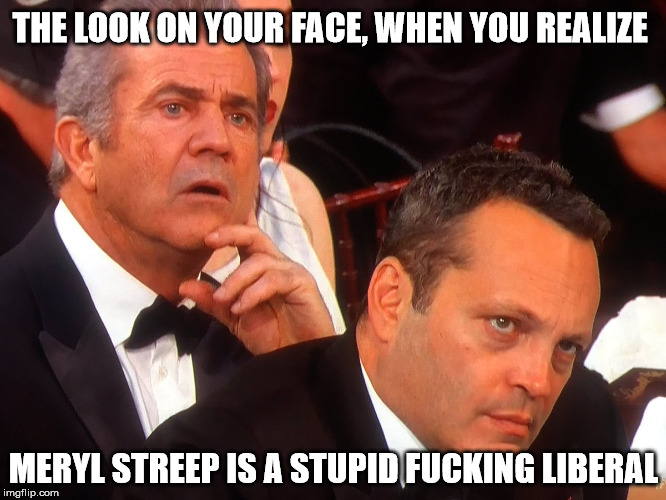 THE LOOK ON YOUR FACE, WHEN YOU REALIZE MERYL STREEP IS A STUPID F**KING LIBERAL | image tagged in mel gibson  vince vaughn | made w/ Imgflip meme maker