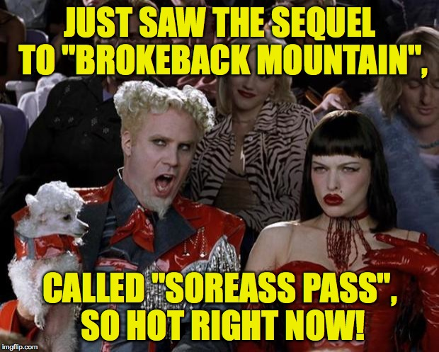 "Another sequel, why not | JUST SAW THE SEQUEL TO ""BROKEBACK MOUNTAIN"", CALLED ""SOREASS PASS"", SO HOT RIGHT NOW! 