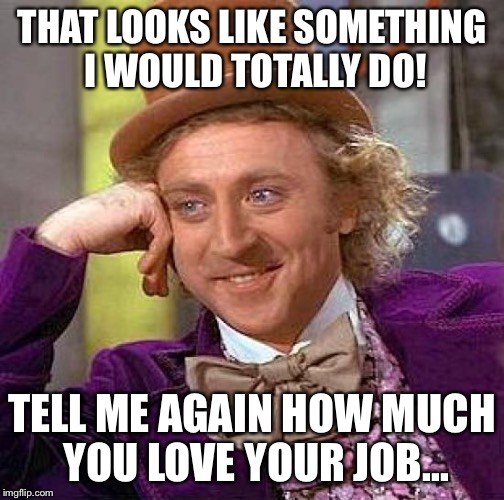 Creepy Condescending Wonka Meme | THAT LOOKS LIKE SOMETHING I WOULD TOTALLY DO! TELL ME AGAIN HOW MUCH YOU LOVE YOUR JOB... | image tagged in memes,creepy condescending wonka | made w/ Imgflip meme maker