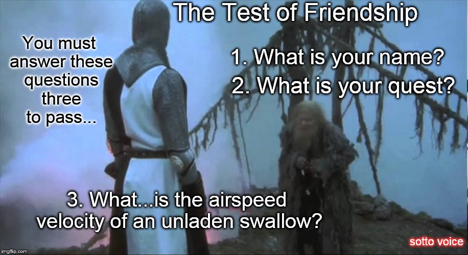 The Test of Friendship; You must answer these questions three to pass... 1. What is your name? 2. What is your quest? 3. What...is the airspeed velocity of an unladen swallow? sotto voice | image tagged in bridge | made w/ Imgflip meme maker
