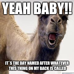 Any Guesses On What Day It Is? | YEAH BABY!! IT´S THE DAY NAMED AFTER WHATEVER THIS THING ON MY BACK IS CALLED | image tagged in camel | made w/ Imgflip meme maker