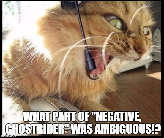 "Y U NO LISTEN |  WHAT PART OF ""NEGATIVE, GHOSTRIDER"" WAS AMBIGUOUS!? 