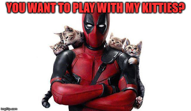 Deadpool With Kittens | YOU WANT TO PLAY WITH MY KITTIES? | image tagged in deadpool with kittens | made w/ Imgflip meme maker