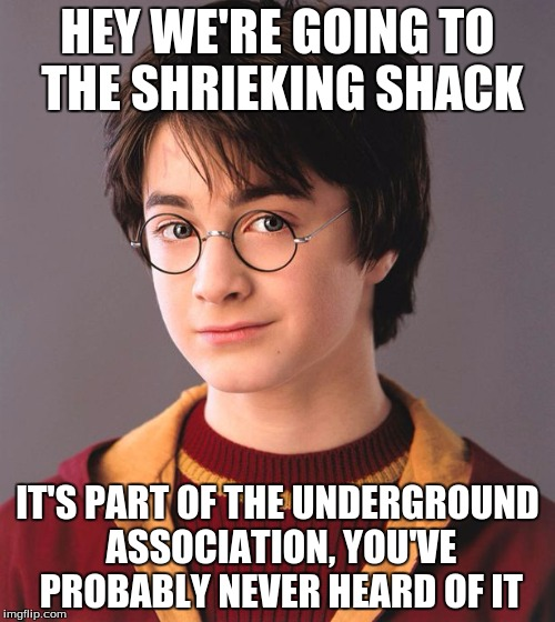 HEY WE'RE GOING TO THE SHRIEKING SHACK IT'S PART OF THE UNDERGROUND ASSOCIATION, YOU'VE PROBABLY NEVER HEARD OF IT | image tagged in harry potter | made w/ Imgflip meme maker