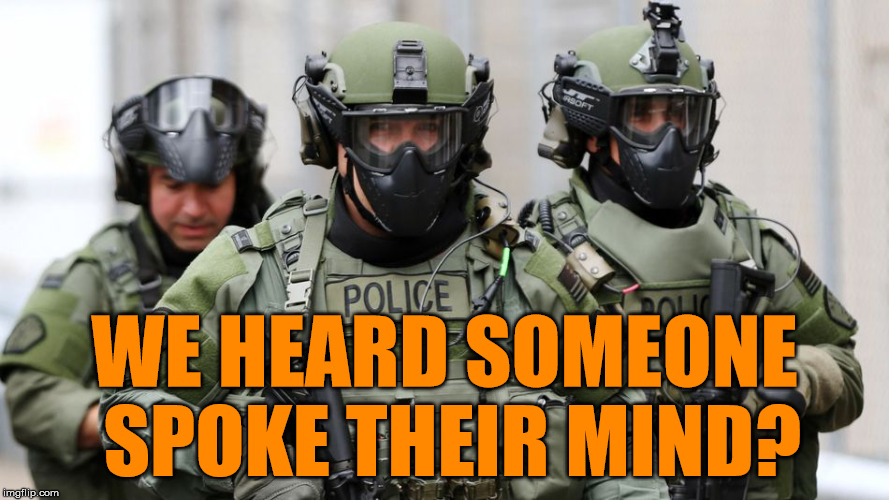 SWAT | WE HEARD SOMEONE SPOKE THEIR MIND? | image tagged in swat | made w/ Imgflip meme maker