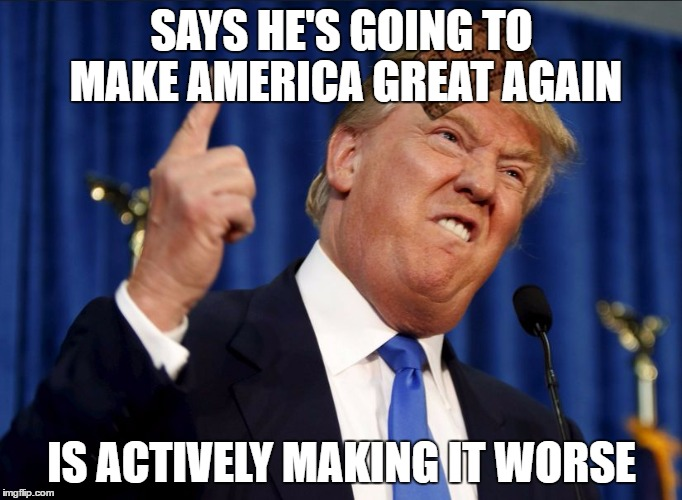 SAYS HE'S GOING TO MAKE AMERICA GREAT AGAIN IS ACTIVELY MAKING IT WORSE | image tagged in scumbag trump,scumbag | made w/ Imgflip meme maker