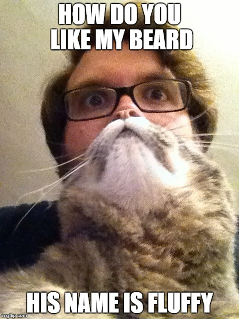 Surprised CatMan | HOW DO YOU LIKE MY BEARD HIS NAME IS FLUFFY | image tagged in memes,surprised catman | made w/ Imgflip meme maker