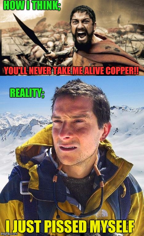 HOW I THINK; YOU'LL NEVER TAKE ME ALIVE COPPER!! I JUST PISSED MYSELF REALITY; | made w/ Imgflip meme maker