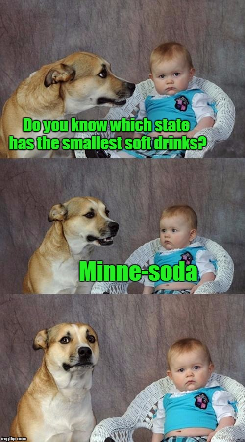 Dad Joke Dog Meme | Do you know which state has the smallest soft drinks? Minne-soda | image tagged in memes,dad joke dog,trhtimmy | made w/ Imgflip meme maker