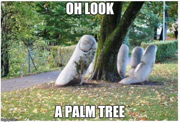 OH LOOK A PALM TREE | image tagged in facepalm | made w/ Imgflip meme maker