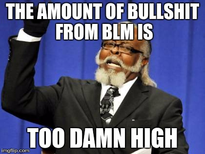 Too Damn High Meme | THE AMOUNT OF BULLSHIT FROM BLM IS TOO DAMN HIGH | image tagged in memes,too damn high | made w/ Imgflip meme maker