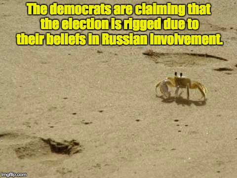 Funny, just a few months ago they were talking about how the election wasn't rigged, and that Trump was just losing. | The democrats are claiming that the election is rigged due to their beliefs in Russian Involvement. | image tagged in little acknowledged fact crab | made w/ Imgflip meme maker