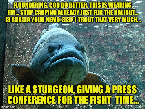Grumpy Donald Trout | FLOUNDERING, COD DO BETTER, THIS IS WEARING FIN... STOP CARPING ALREADY JUST FOR THE HALIBUT... IS RUSSIA YOUR NEMO-SIS? I TROUT THAT VERY M | image tagged in grumpy fish,memes | made w/ Imgflip meme maker