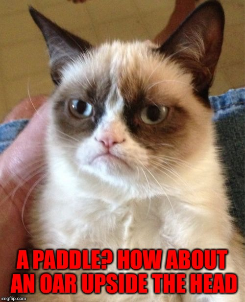 Grumpy Cat Meme | A PADDLE? HOW ABOUT AN OAR UPSIDE THE HEAD | image tagged in memes,grumpy cat | made w/ Imgflip meme maker
