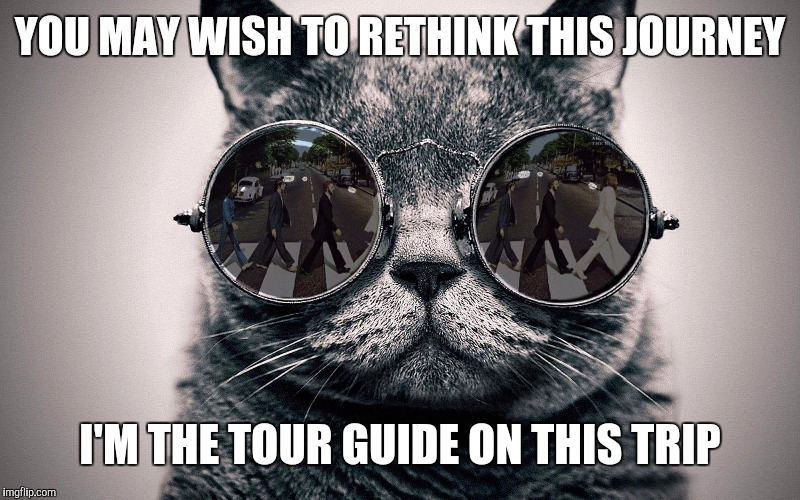 Beatles cat | YOU MAY WISH TO RETHINK THIS JOURNEY I'M THE TOUR GUIDE ON THIS TRIP | image tagged in beatles cat | made w/ Imgflip meme maker
