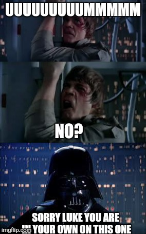 UUUUUUUUUMMMMM NO? SORRY LUKE YOU ARE IN YOUR OWN ON THIS ONE | made w/ Imgflip meme maker
