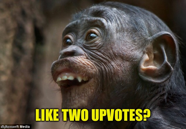 LIKE TWO UPVOTES? | made w/ Imgflip meme maker