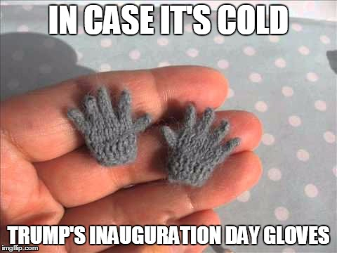 He should have them. Just in case. | IN CASE IT'S COLD TRUMP'S INAUGURATION DAY GLOVES | image tagged in trump,small hands | made w/ Imgflip meme maker