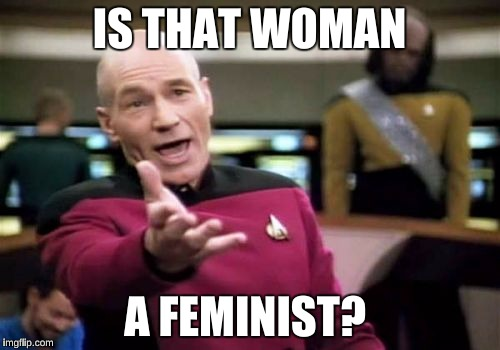 Picard Wtf Meme | IS THAT WOMAN A FEMINIST? | image tagged in memes,picard wtf | made w/ Imgflip meme maker