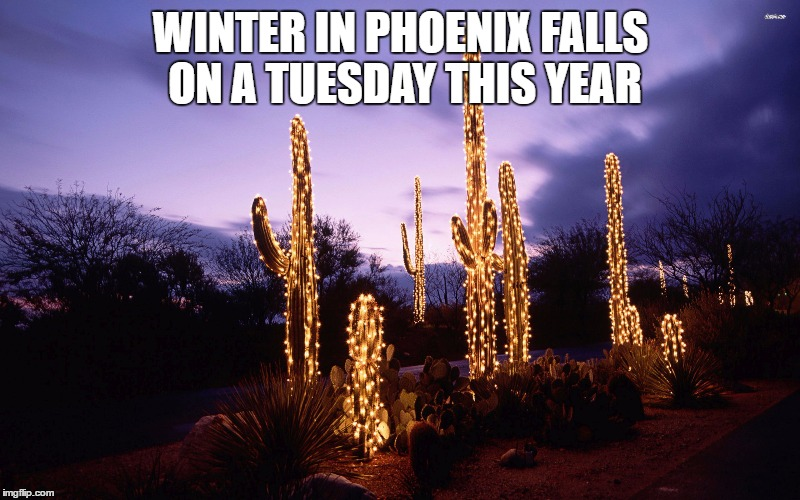 WINTER IN PHOENIX FALLS ON A TUESDAY THIS YEAR | made w/ Imgflip meme maker