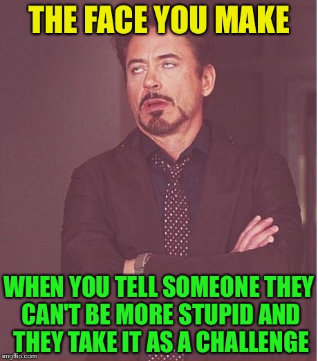 Face You Make Robert Downey Jr Meme | THE FACE YOU MAKE WHEN YOU TELL SOMEONE THEY CAN'T BE MORE STUPID AND THEY TAKE IT AS A CHALLENGE | image tagged in memes,face you make robert downey jr | made w/ Imgflip meme maker