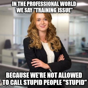"Successful Business Woman | IN THE PROFESSIONAL WORLD WE SAY ""TRAINING ISSUE"" BECAUSE WE'RE NOT ALLOWED TO CALL STUPID PEOPLE ""STUPID"" 