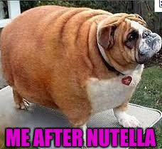 Nutella | ME AFTER NUTELLA | image tagged in memes,dogs | made w/ Imgflip meme maker
