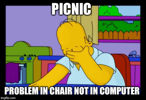 Homer face palm | PICNIC PROBLEM IN CHAIR NOT IN COMPUTER | image tagged in homer face palm | made w/ Imgflip meme maker