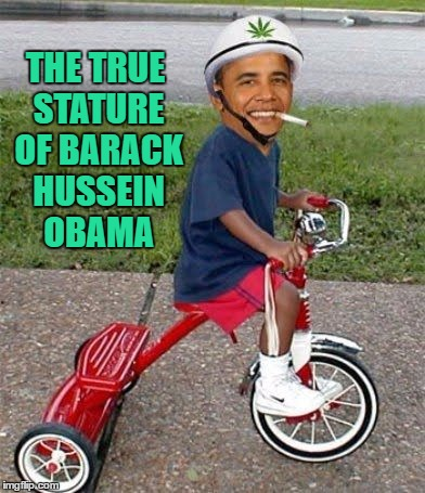 THE TRUE STATURE OF BARACK HUSSEIN OBAMA | made w/ Imgflip meme maker