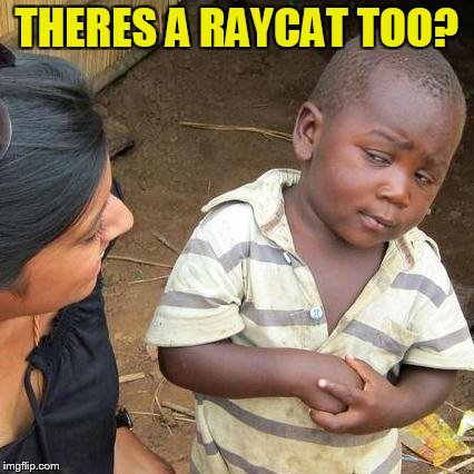Third World Skeptical Kid Meme | THERES A RAYCAT TOO? | image tagged in memes,third world skeptical kid | made w/ Imgflip meme maker