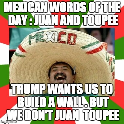 MEXICAN WORDS OF THE DAY : JUAN AND TOUPEE TRUMP WANTS US TO BUILD A WALL . BUT WE DON'T JUAN  TOUPEE | image tagged in mexican word of the day | made w/ Imgflip meme maker